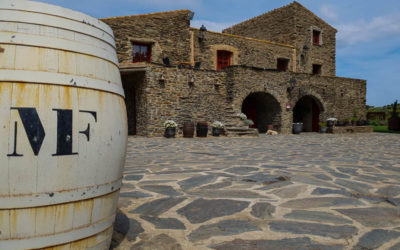 Celler Martin Faixo in Cadaques – DO Emporda Wineries