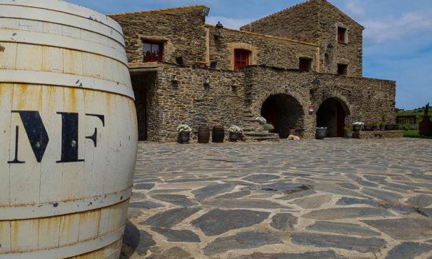 Celler Martin Faixo in Cadaques – DO Emporda Wineries