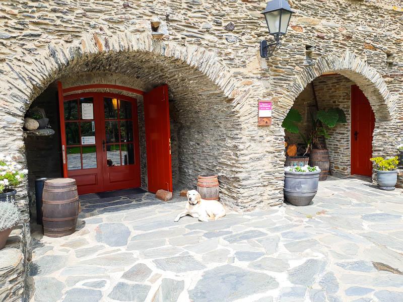 Celler Martin Faixo in Cadaques - DO Emporda Wineries