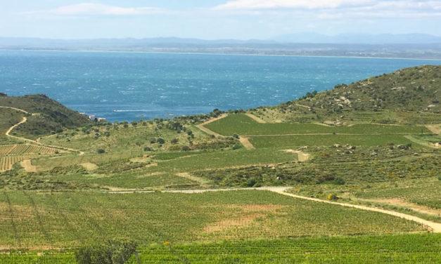 Celler Espelt Viticultors – Alt Emporda Wineries
